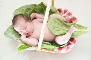 baby in a lettuce basket