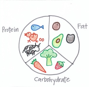 Macronutrients chart child draw