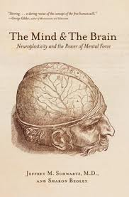 the mind and the brain pic